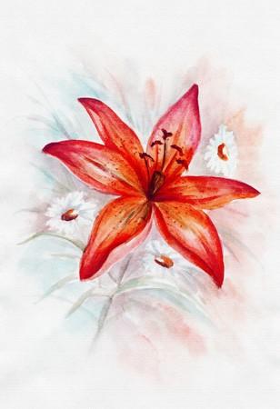 oil paints: Lirio rojo y camomiles, aceite de imagen se pinta sobre un lienzo