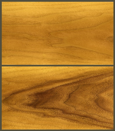 Natural background: wood, veneer teak tree, decorative finishing material, grows in tropics photo