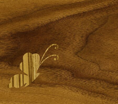 marqueteria: Marquetería, mariposas de chapa de cebrano contra el fondo de madera de teca Foto de archivo