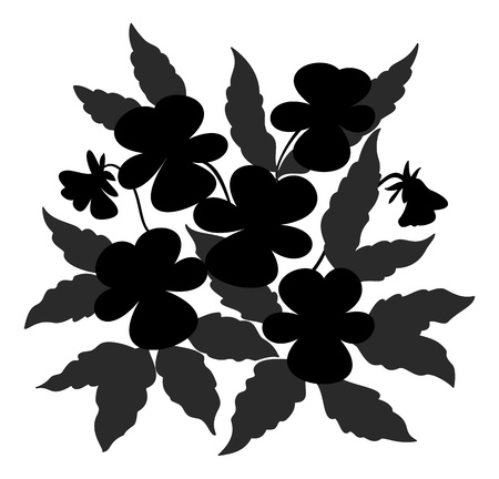 pansies: Flowers and leaves pansies, black contour on a white background.