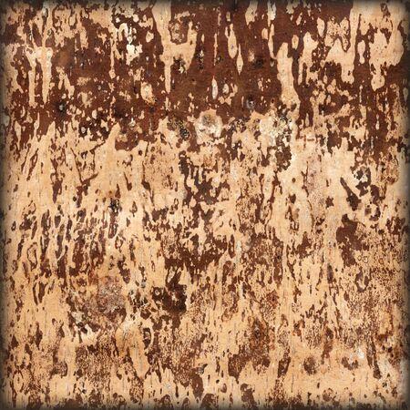 marqueteria: La textura de la parte inferior de una corteza de abedul en barbecho, resumen de antecedentes naturales Foto de archivo