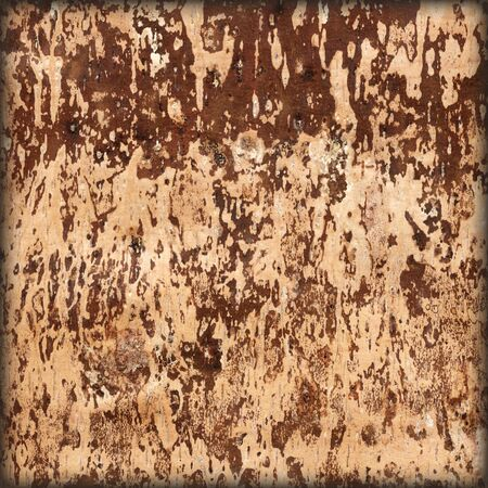 Texture of underside of a fallow birch bark, natural abstract background photo