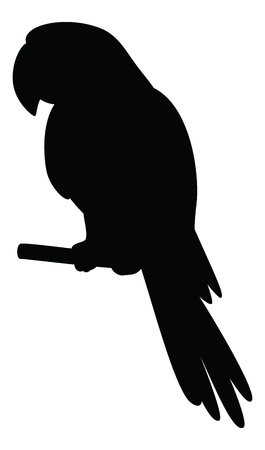 aviary: Clever speaking parrot sits on a wooden pole, black silhouette on white background