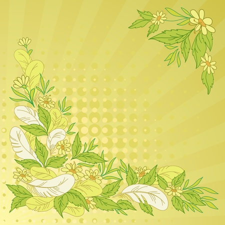 Abstract floral background  leaves, flowers, feathers, rays and circles on green and yellow  Vector Vector