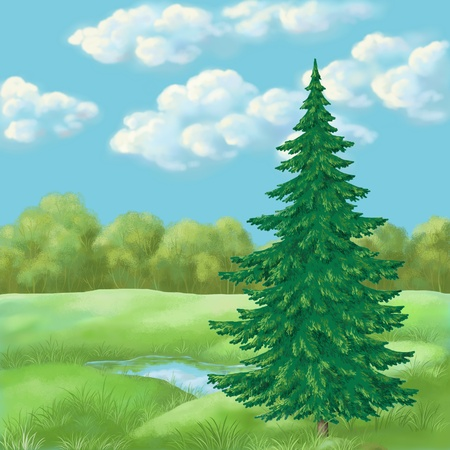 Picture, hand-draw oil paints  landscape, green summer forest photo