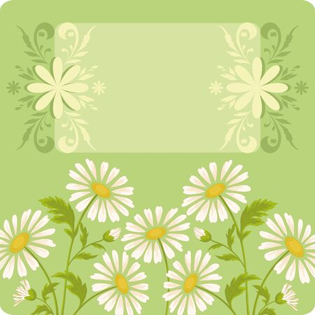 Floral holiday background with chamomile flowers and frame Stock Vector - 16795861