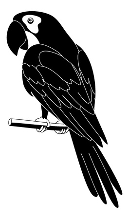 guacamaya caricatura: Loro que habla Clever se sienta en un poste de madera silueta, negro sobre fondo blanco Vector