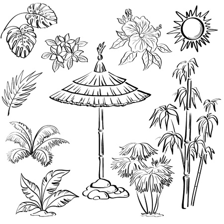 Exotic objects set, black contour on white background  umbrella canopy, plants, leaves, flowers, the sun   Vector
