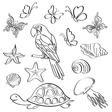 petoncle: Set d'animaux exotiques et des insectes, contour noir sur fond blanc Vecteur Illustration