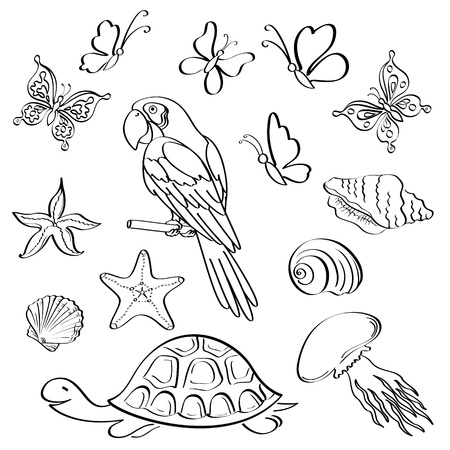 Set of exotic animals and insects, black contour on white background  Vector