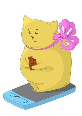 overeat: Cartoon fat animal weigh yourself on the scale and eat chocolate, feel the pain of their excess weight  Illustration