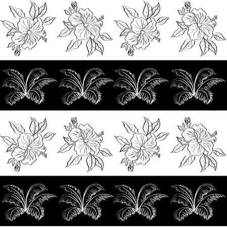 Exotique fond Seamless, mod�le, noir et blanc contour des fleurs d'hibiscus et de feuilles