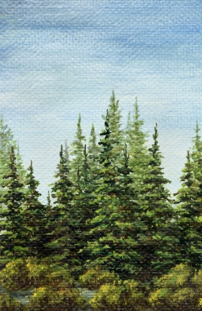 coppice: Painting, picture oil paints on a canvas. Landscape, spruce forest