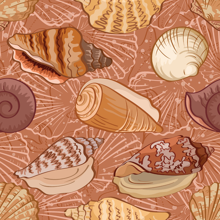 cockle: Seamless background, pattern with marine seashells and contour  Vector