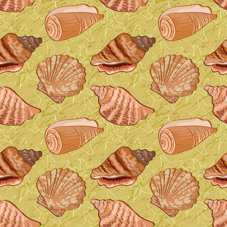 cockle: Seamless background, pattern with marine seashells and contour. Vector