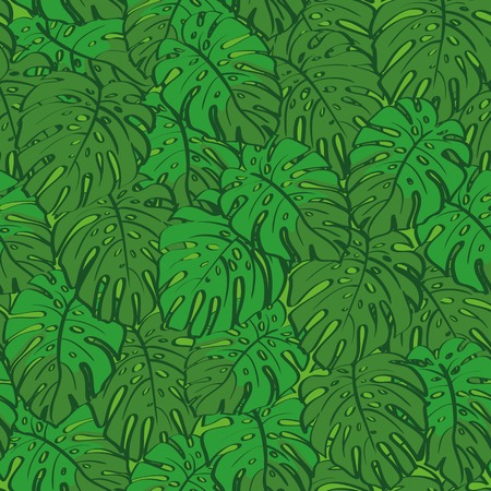 monstera: Seamless background, pattern of green monstera plant leaves. Vector