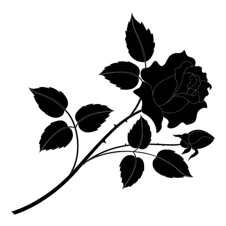 Flower rose with leaves black silhouettes isolated on white background  Illustration