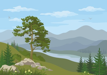 Mountain landscape with coniferous trees, river, flowers and blue cloudy sky.