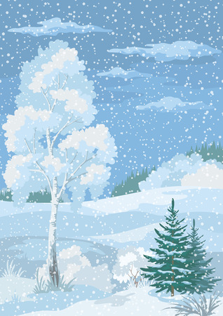 coppice: Christmas Winter Forest Landscape with Birch, Firs Trees and Sky with Snow and Clouds. , Contains Transparencies. Vecto Illustration