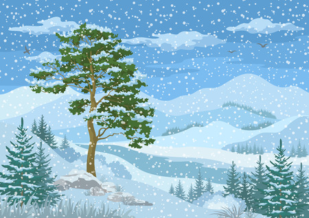Winter Mountain Landscape with Pine and Fir Trees, Blue Sky with Snow, Birds and Clouds Illustration