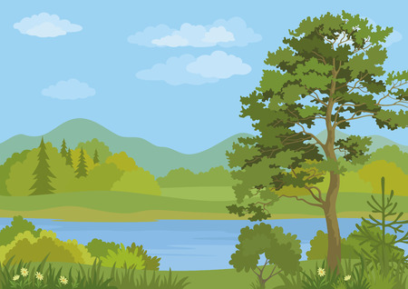 lake shore: Landscape with Pine, Fir Trees, Grass and Flowers on the Shore of a Mountain Lake under a Blue Cloudy Sky. Vector Illustration