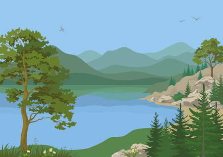 lake shore: Landscape with Pine, Fir Trees, Flowers and Grass on the Shore of a Mountain Lake under a Blue Sky with Birds. Vector Illustration