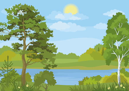 lake shore: Landscape with Pine, Fir and Birch Trees, Grass and Flowers on the Shore of a Lake under a Blue Cloudy Sky with Sun. Vecto Illustration