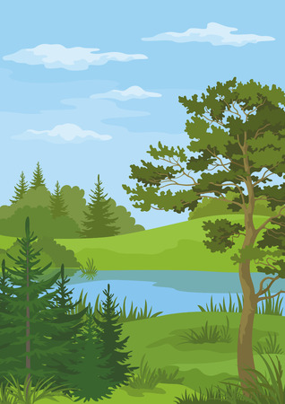 lake shore: Landscape with Pine, Fir Trees and Green Grass on the Shore of a River Lake under a Blue Cloudy Sky. Vector