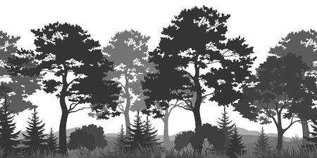 coniferous forest: Seamless Bosque Horizontal verano con pino, abeto, Hierba y Bush Negro y Gris Siluetas en el fondo blanco. Vector