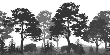 woods: Seamless Horizontal Summer Forest with Pine, Fir Tree, Grass and Bush Black and Gray Silhouettes on White Background. Vector Illustration