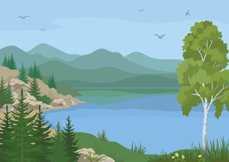 Landscape with Birch, Fir Trees, Flowers and Grass on the Shore of a Mountain Lake under a Blue Sky with Birds. Vector