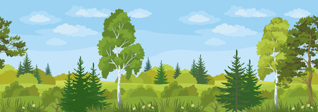 Seamless Horizontal Summer Landscape, Forest with Pines, Birches and Fir Trees, Flowers, Green Grass and Blue Sky with Clouds. Vector