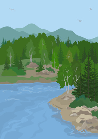 mountain view: Landscape with Birch and Fir Trees on the Shore of a Mountain Lake under a Blue Sky with Birds. Vector Illustration