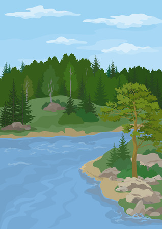 Landscape with Pine, Fir and Birch Trees on the Bank of a Forest Mountain River under a Blue Cloudy Sky. Vector