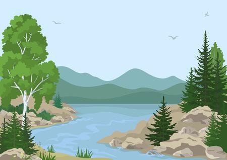 Landschap met berken, dennen bomen en gras op de rotsachtige oever van een rivier Berg onder een blauwe hemel met vogels. Vector
