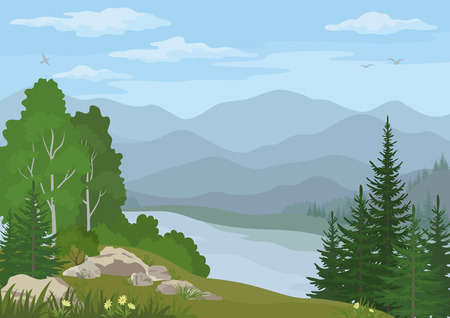 Landscape with Birch, Fir Trees, Flowers and Grass on the Rocky Bank of a Mountain Lake under a Blue Cloudy Sky with Birds. Vector