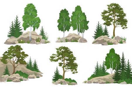 Ustawienie krajobrazów, drzew iglastych i liściastych, sosna, jodła, brzoza, kwiaty i trawa na skałach, izolowany na białym tle. Wektor