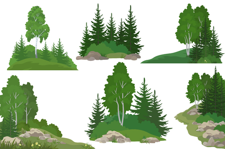 Set Landscapes, Isolated on White Background Coniferous and Deciduous Trees, Flowers and Grass on the Rocks. Vector 矢量图像