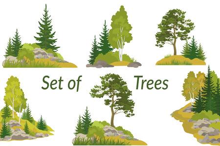 夏と秋の風景は、白い背景の針葉樹と落葉広葉樹の木、草、岩の上に分離されて設定します。ベクトル 写真素材 - 81724307