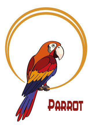 Exotic Bird, Cartoon Colorful Parrot Macaw Sits on the Ring. Vector Ilustração