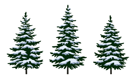 Set Green Fir Trees with White and Blue Snow, Winter Holiday Christmas Decoration Isolated on White Background. Vector Illustration