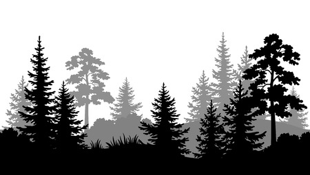 Seamless Horizontal Summer Forest with Pine, Fir Tree, Grass and Bush Black and Gray Silhouettes on White Background. Vector Ilustração