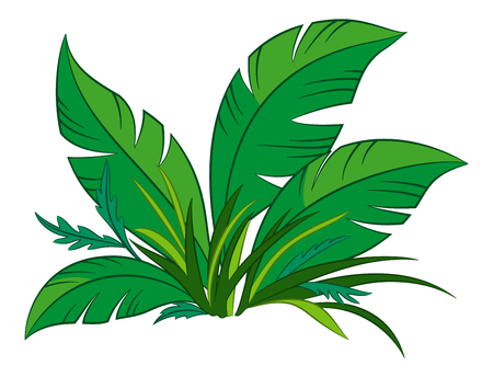 Nature Symbol, Cartoon Tropical Plant with Green Leaves, Isolated on White Background. Vector 向量圖像