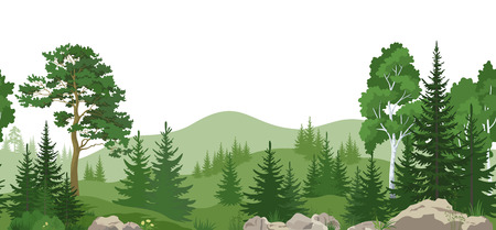 Seamless Horizontal Summer Mountain Landscape with Pine, Birch and Fir Trees, Green Grass on the Rocks. Vector Ilustração