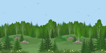 Seamless Horizontal Summer or Spring Landscape, Forest on Hills with Birches and Fir Trees, Flowers, Green Grass and Blue Sky with Birds. Vector