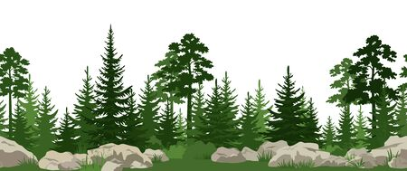 Seamless Horizontal Summer Landscape with Green Pine, Fir Trees, Bushes and Grass on the Stones. Illustration