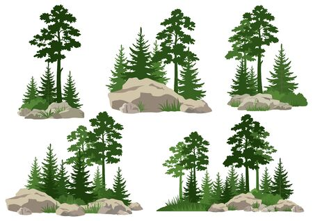 Set Landscapes, Isolated on White Background Silhouettes Coniferous and Deciduous Trees and Grass on the Rocks. Vector