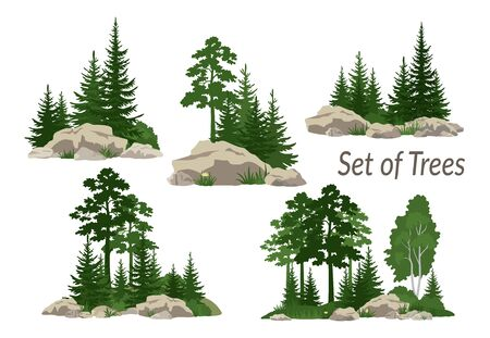 Set Landscapes, Isolated on White Background Coniferous and Deciduous Trees, Flowers and Grass on the Rocks. Vector Ilustração