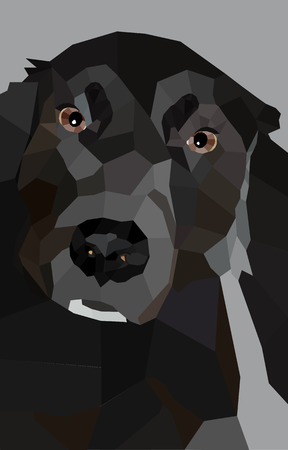 Chien Terre-Neuve dans un design low poly portrait noir et blanc d'un chien en style polygone Vecteurs