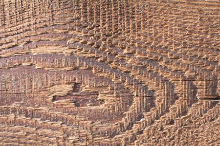 Old oiled board close up, background image